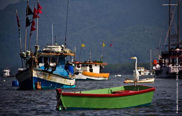 bertioga-com-seu-canal-cheio-de-barcos-de-pesca-e-iates-de-lazer